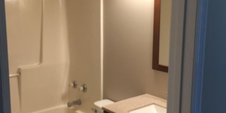 106 Hickory Dr Hall Bathroom